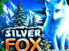 Клуб Вулкан и Silver Fox без СМС и без регистрации