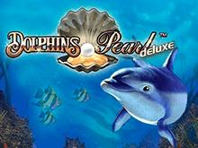 Dolphin's Pearl Deluxe играть сейчас