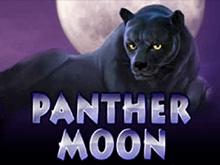 Panther Moon для мобильного