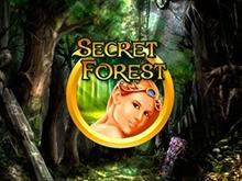 Secret Forest – играть бесплатно